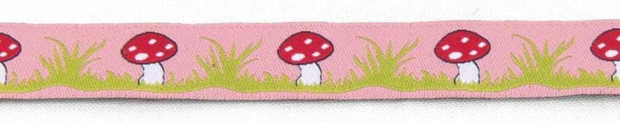 Borte Pilze rosa
