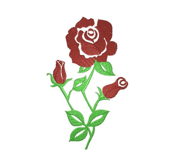 Rose mit Stil