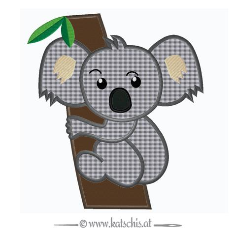 Koalabär Boy auf Baum